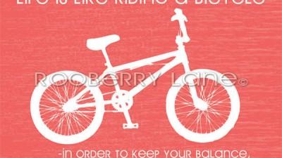 rooberrylane_bicyclestore2RGB